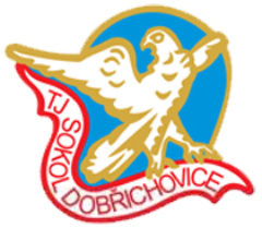 Sokol Dobřichovice
